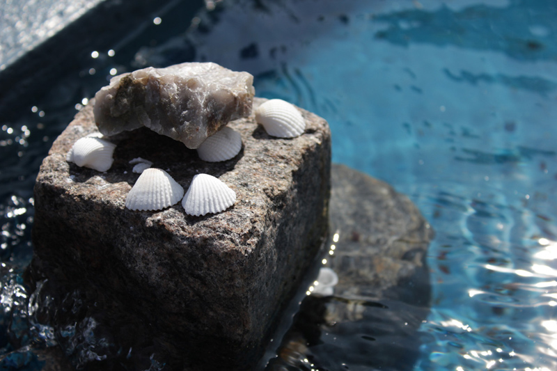 Simpukoi ja kivii